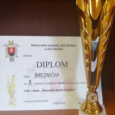 DHZ Breznička - VIII.ročník